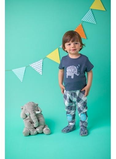 Mininio Antrasit Elephant T-Shirt ve Yamalı şalvar Takım (3-24ay) Antrasit Elephant T-Shirt ve Yamalı şalvar Takım (3-24ay) Antrasit